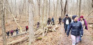 dnk presents, hiking, live adventurously